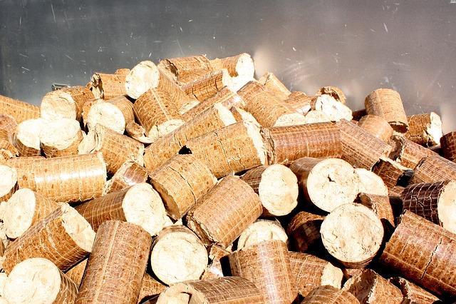 Biomasa energías renovables